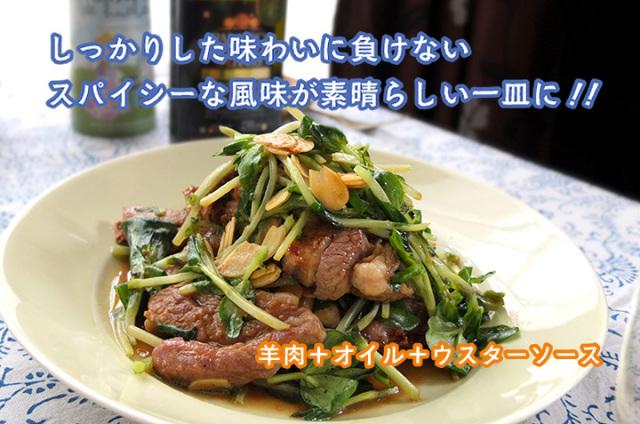 パラシオ 羊肉と豆苗のスパイシー炒め